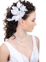 Wedding Hairstyle No. 11